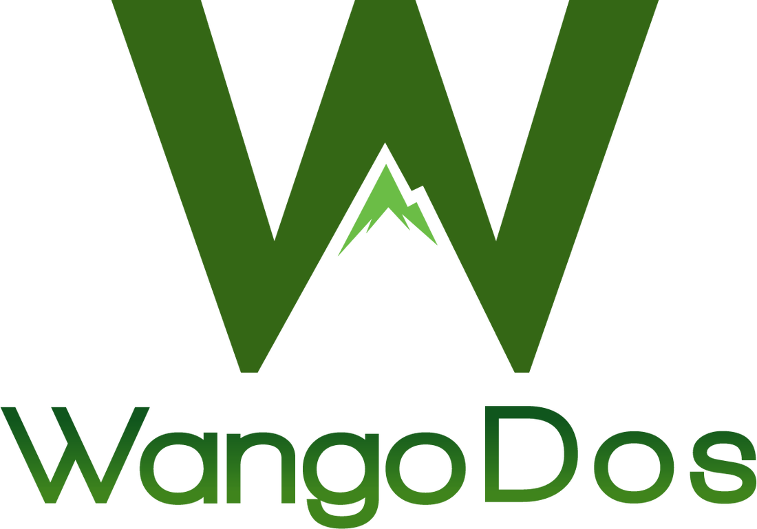 Wangodos-Pitch-Social-Innovation-Competition